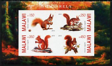Malawi 2010 Squirrels imperf sheetlet containing 4 values unmounted mint