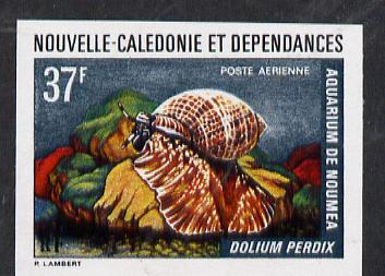 New Caledonia 1974 Marine Fauna 37f (Dolium Shell) imperf proof from limited printing unmounted mint, SG 524*