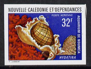 New Caledonia 1974 Marine Fauna 32f (Hydatina Shell) imperf proof from limited printing unmounted mint, SG 523*