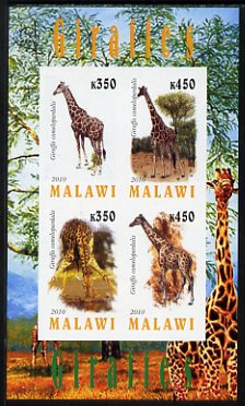 Malawi 2010 Giraffes imperf sheetlet containing 4 values unmounted mint