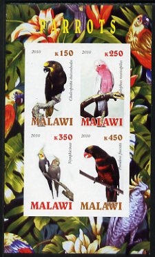 Malawi 2010 Parrots imperf sheetlet containing 4 values unmounted mint
