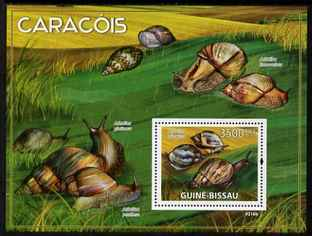 Guinea - Bissau 2009 Snails of Africa perf s/sheet unmounted mint Michel BL 690
