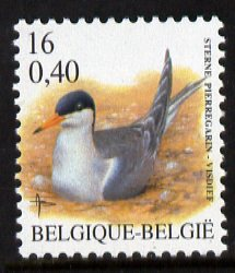 Belgium 2000-01 Birds #4 Common Tern 16f/0.40 Euro dual currency unmounted mint, SG 3546