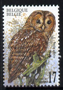 Belgium 1999 Tawny Owl (Strix aluco) 17f unmounted mint SG 3479