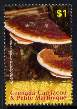 Grenada - Grenadines 2007 Ganoderma resinaceum $1 from Fungi of the World set unmounted mint, SG 3893