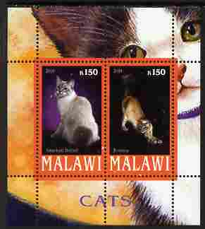 Malawi 2010 Domestic Cats #01 perf sheetlet containing 2 values unmounted mint