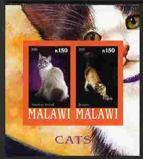 Malawi 2010 Domestic Cats #01 imperf sheetlet containing 2 values unmounted mint