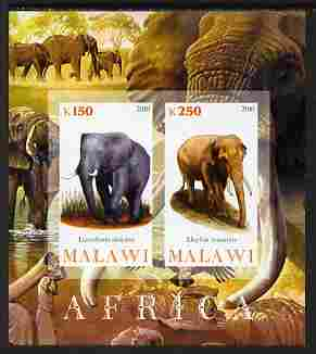 Malawi 2010 African Animals - Elephants imperf sheetlet containing 2 values unmounted mint
