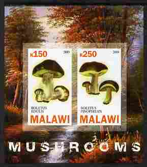 Malawi 2010 Mushrooms imperf sheetlet containing 2 values unmounted mint