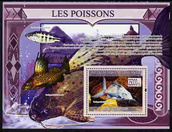 Guinea - Conakry 2009 Fish perf s/sheet unmounted mint