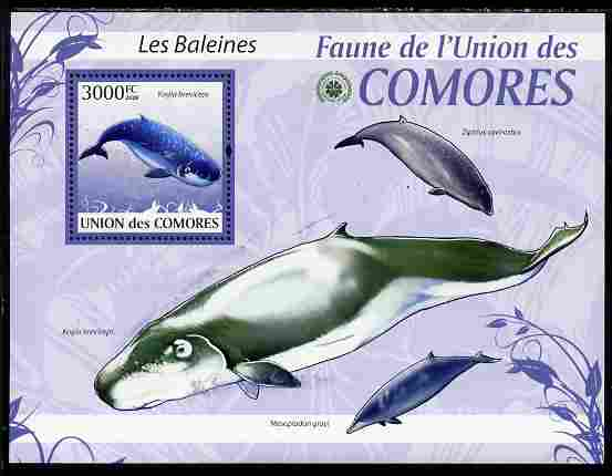 Comoro Islands 2009 Whales perf s/sheet unmounted mint Yv 197