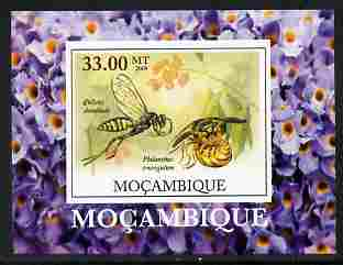 Mozambique 2009 William Kirby Butterflies & Insects #2 individual imperf deluxe sheetlet unmounted mint. Note this item is privately produced and is offered purely on its thematic appeal