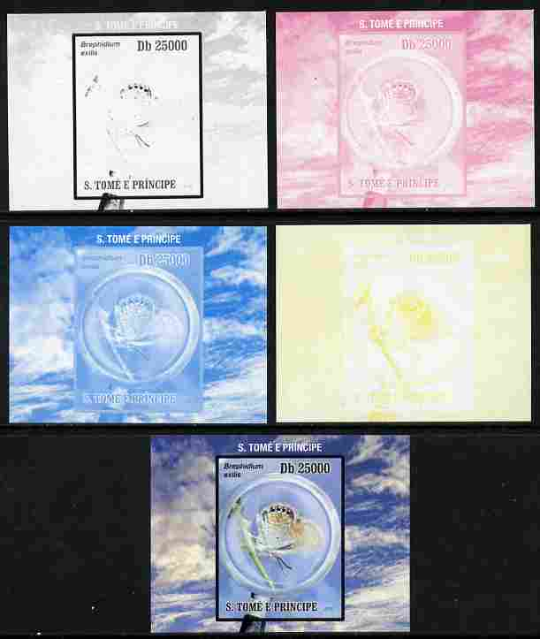St Thomas & Prince Islands 2010 Butterflies #4 individual deluxe sheetlet - the set of 5 imperf progressive proofs comprising the 4 individual colours plus all 4-colour composite, unmounted mint