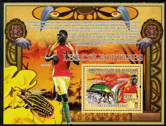 Guinea - Conakry 2009 Fauna - Beetles & Footballers perf s/sheet unmounted mint