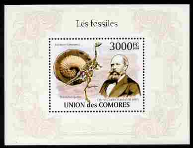 Comoro Islands 2010 Fossils perf m/sheet unmounted mint