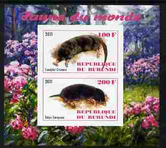 Burundi 2011 Fauna of the World - Moles imperf sheetlet containing 2 values unmounted mint