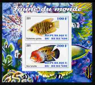 Burundi 2011 Fauna of the World - Fish #1 (Gourami & Vieja) imperf sheetlet containing 2 values unmounted mint