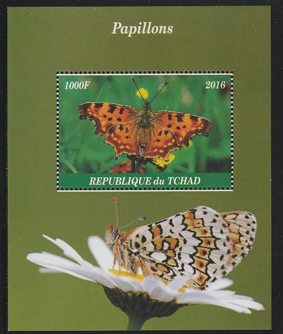Chad 2016 Butterflies perf s/sheet containing 1 value unmounted mint. Note this item is privately produced and is offered purely on its thematic appeal. .