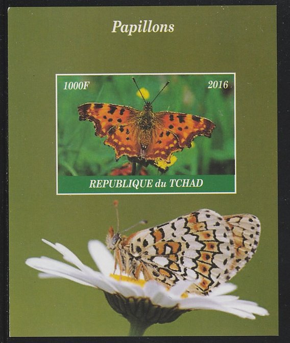 Chad 2016 Butterflies imperf s/sheet containing 1 value unmounted mint. Note this item is privately produced and is offered purely on its thematic appeal. .