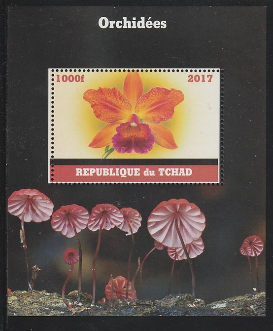 Chad 2017 Orchids perf s/sheet containing 1 value unmounted mint. Note this item is privately produced and is offered purely on its thematic appeal. .