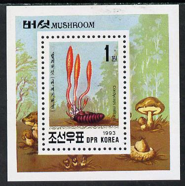 North Korea 1993 Fungi m/sheet (1wn value) unmounted mint