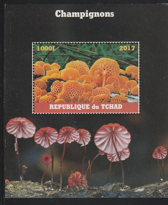 Chad 2017 Fungi perf s/sheet containing 1 value unmounted mint. Note this item is privately produced and is offered purely on its thematic appeal. .