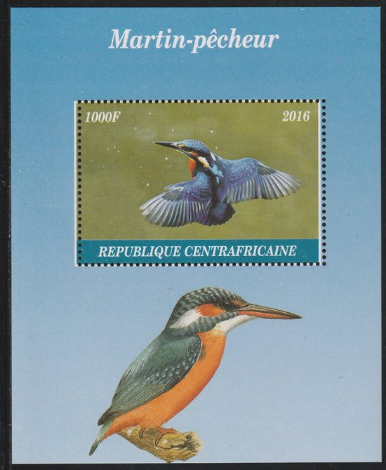 Central African Republic 2016 Kingfisher perf s/sheet containing 1 value unmounted mint. Note this item is privately produced and is offered purely on its thematic appeal