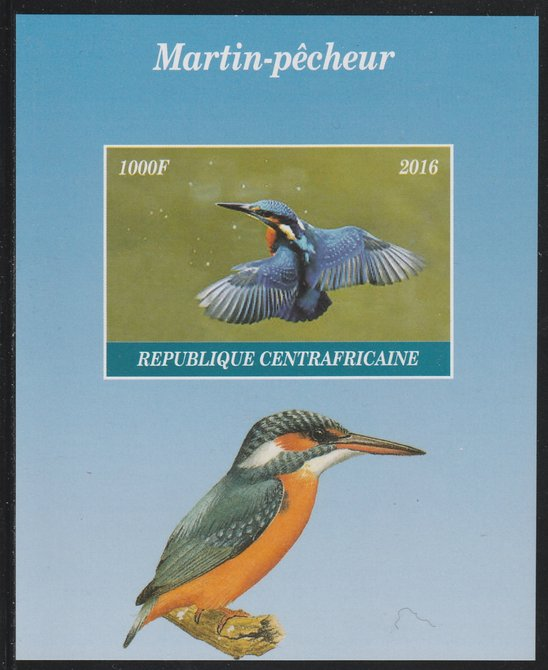 Central African Republic 2016 Kingfisher imperf s/sheet containing 1 value unmounted mint. Note this item is privately produced and is offered purely on its thematic appeal