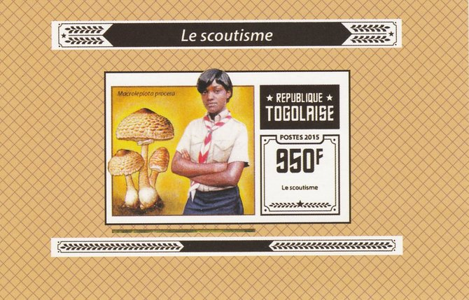 Togo 2015 Scouting #2 imperf deluxe sheet unmounted mint. Note this item is privately produced and is offered purely on its thematic appeal