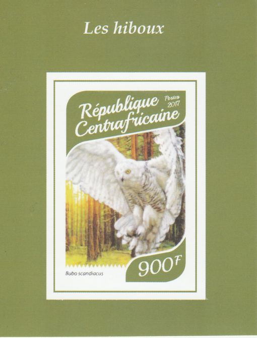 Central African Republic 2017 Owls #3 imperf deluxe sheet unmounted mint. Note this item is privately produced and is offered purely on its thematic appeal.
