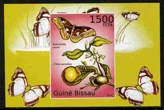 Guinea - Bissau 2010 Butterflies #10 individual imperf deluxe sheet unmounted mint. Note this item is privately produced and is offered purely on its thematic appeal