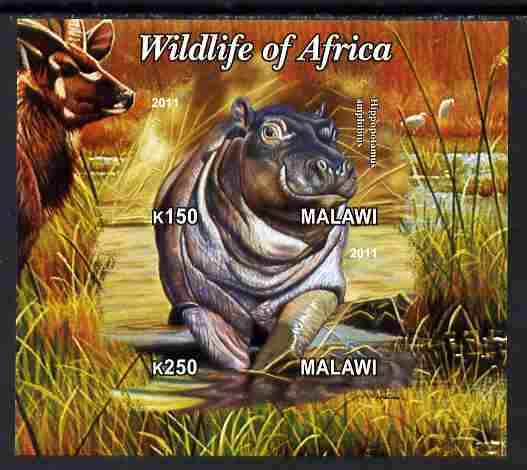 Malawi 2011 Wildlife of Africa #3 - Hippos composite imperf sheetlet containing 2 values unmounted mint