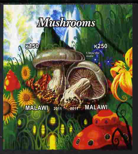 Malawi 2011 Mushrooms #2 imperf sheetlet containing 2 values unmounted mint