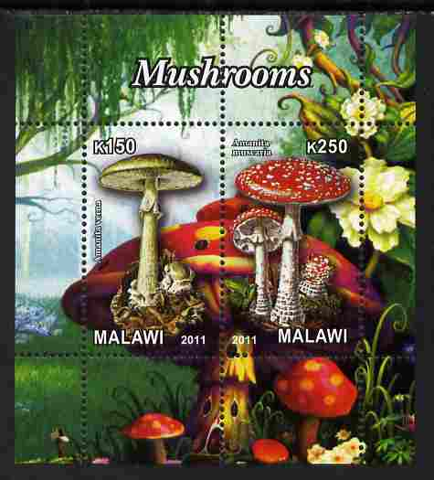 Malawi 2011 Mushrooms #3 perf sheetlet containing 2 values unmounted mint