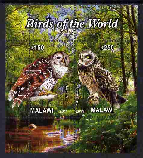 Malawi 2011 Birds of the World #3 - Owls perf sheetlet containing 2 values unmounted mint