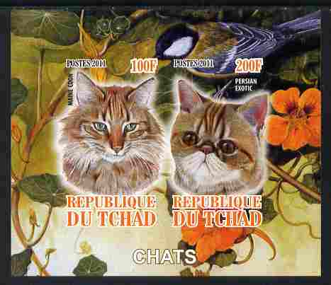Chad 2011 Domestic Cats imperf sheetlet containing 2 values unmounted mint