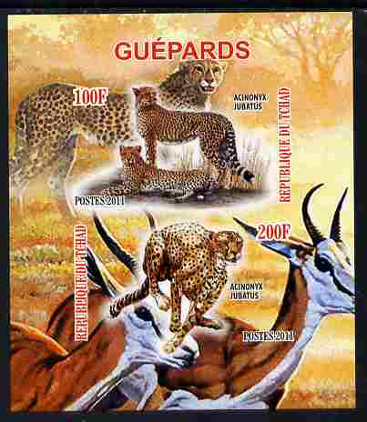 Chad 2011 Cheetahs imperf sheetlet containing 2 values unmounted mint