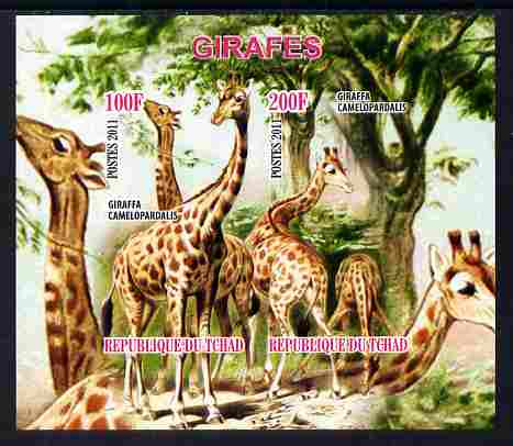 Chad 2011 Giraffes imperf sheetlet containing 2 values unmounted mint