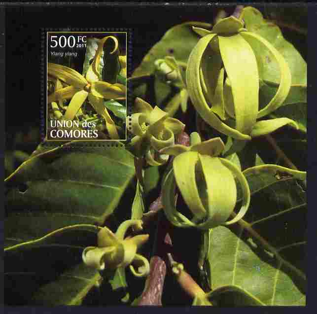 Comoro Islands 2011 Plants perf m/sheet (Ylang Ylang) unmounted mint