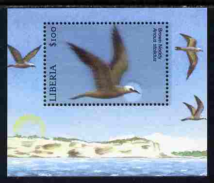 Liberia 2010 Birds perf m/sheet - Brown Noddy unmounted mint