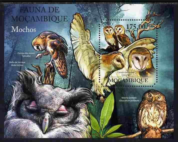 Mozambique 2011 Owls perf m/sheet containing octagonal shaped value unmounted mint