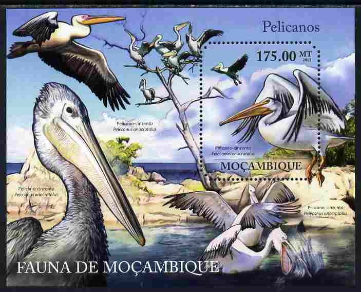 Mozambique 2011 Pelicans perf m/sheet containing octagonal shaped value unmounted mint