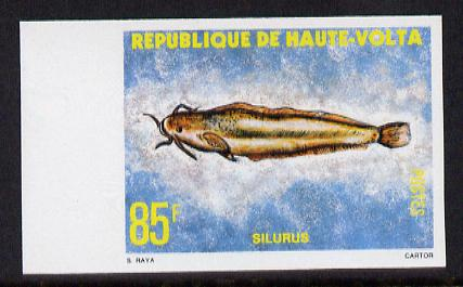 Upper Volta 1979 Freshwater Fish 85f Catfish unmounted mint imperf single, as SG 522
