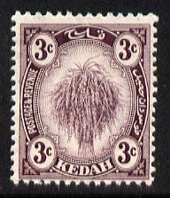 Malaya - Kedah 1919-21 Sheaf of Rice 3c deep purple MCA unmounted mint SG19