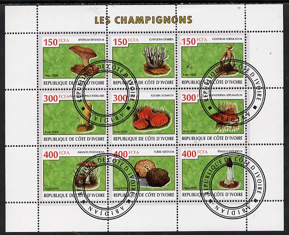 Ivory Coast 2009 Mushrooms perf sheetlet containing 9 values fine cto used