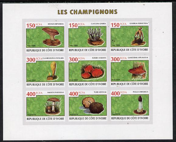 Ivory Coast 2009 Mushrooms imperf sheetlet containing 9 values unmounted mint