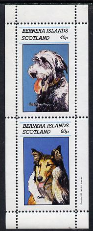 Bernera 1981 Dogs (Irish Wolfhound & Collie) perf  set of 2 values (40p & 60p) unmounted mint