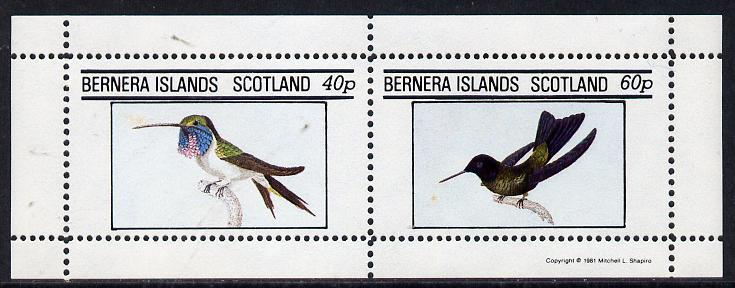Bernera 1981 Birds #03 (Humming Birds) perf  set of 2 values (40p & 60p) unmounted mint