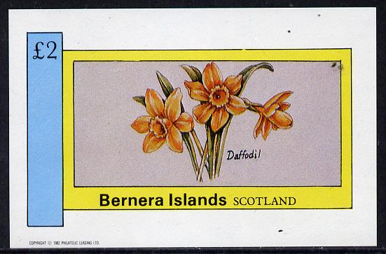 Bernera 1982 Flowers #03 (Daffodil) imperf deluxe sheet (�2 value) unmounted mint
