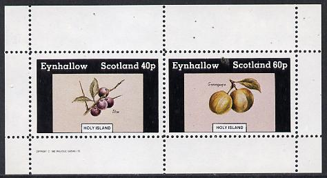 Eynhallow 1982 Fruit (Sloe & Greengage) perf  set of 2 values (40p & 60p) unmounted mint